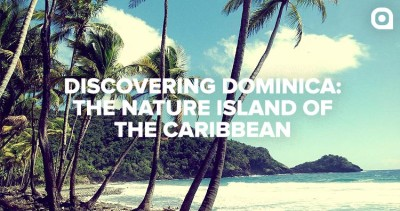 "Palm trees swaying in the wind on the beach of the Caribbean island of Dominica with the text ""Discovering Dominica: The Nature Island of the Caribbean"""