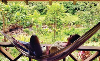 Wellness and relaxation while laying in a hammock in middle of the rain forest in Dominica