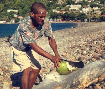 Travel with Locals as man is preparing a coconut to drink on the coast of Dominica