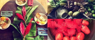 Photo montage on foods, colors, flowers and wellness in Dominica