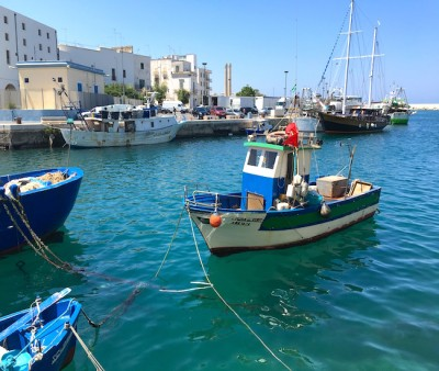 VoomaGo Discover Puglia: One of Italy's Most Beautiful Regions! | VoomaGo